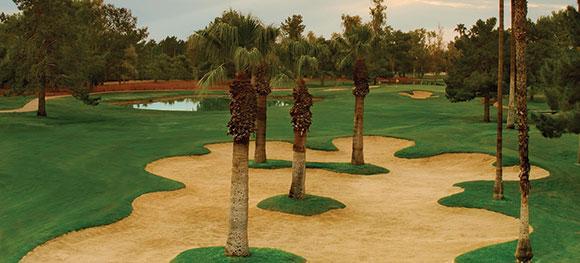 Amateur golf instructor arizona